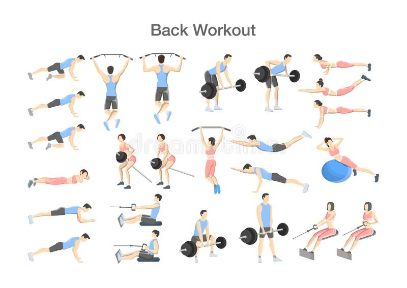 Big set of people doing exercises in the gym. Workout with exercise machine for different groups of muscles. Upper body training for back. Isolated flat vector stock illustration