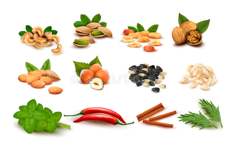 Download Big Set Of Ripe Nuts And Seeds And Spices Stock Image - Image: 26578761