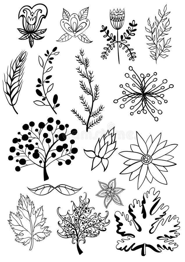 Big set of vintage elements. Vector decoration collection. Hand drawn flowers, leaves and page decor. EPS vector illustration