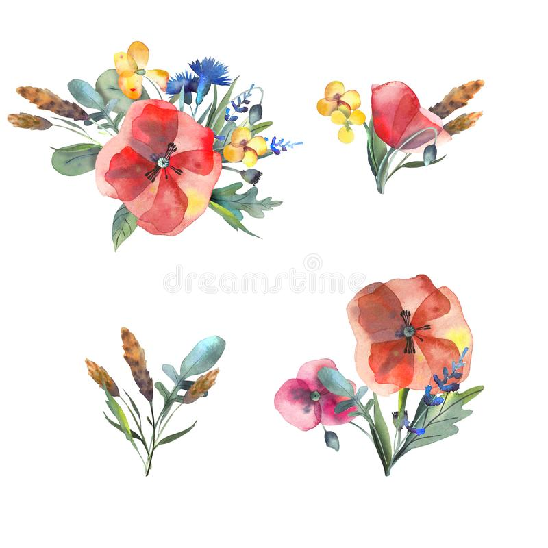 Big set of watercolor elements - leaves, herbs, flowers. Botanical collection include poppies, cornflowers, buttercups, spikelets. Illustration isolated on royalty free illustration
