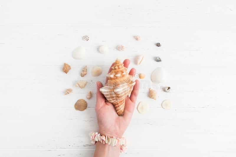 A big shell in the female hand with small various shells around, flat lay stock image