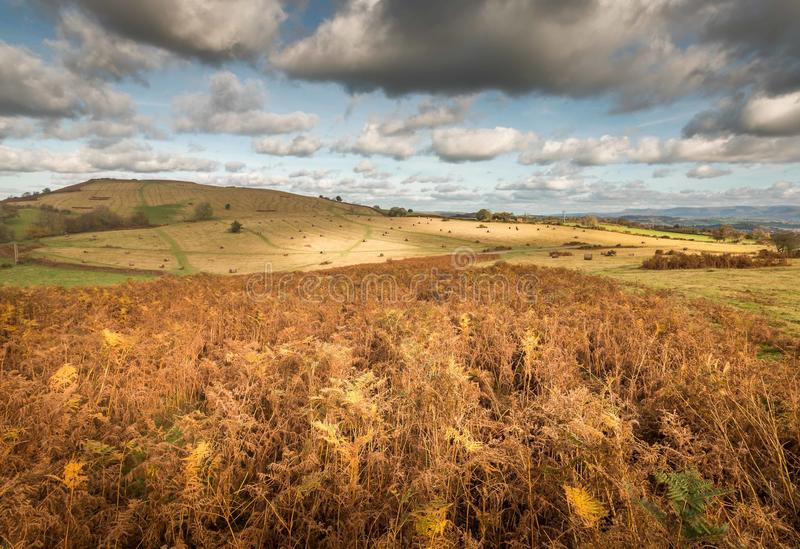 Big Skies. Mynidd Illtyd common,Brecon Beacons, Wales stock photography