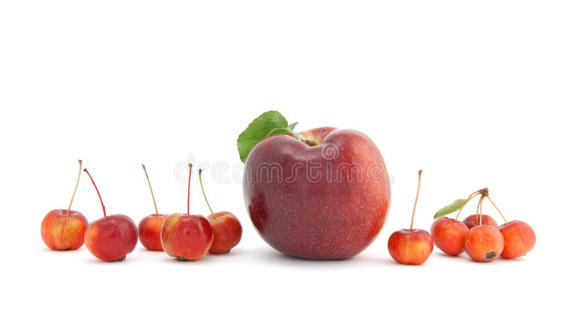 Big And Small Apples On White Background Stock Image
