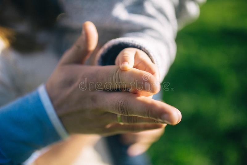 Big and small in family royalty free stock photo