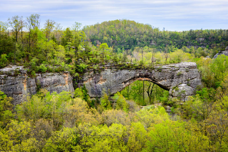 Big South Fork National River and Recreation Area. Allegheny royalty free stock photo