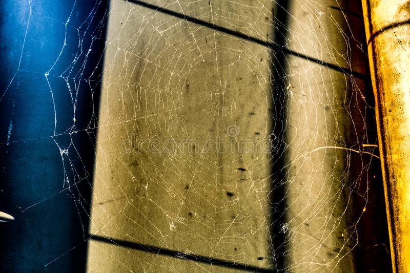 Big spiderweb in sunlight in front of shadowed wall royalty free stock photography