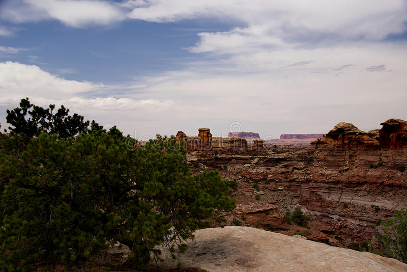 Big Springs Canyon Overlook B. Big Springs Canyon Overlook in Needles Region of Canyonlands National Park stock image