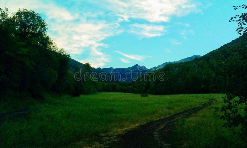 Big Springs Mountain Meadow Path. A path winding down a meadow leading toward the mountain peak in the background. Big Springs Hollow Trail, Utah, USA stock photography