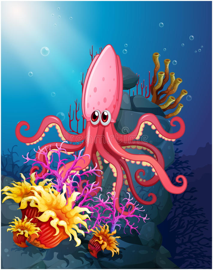 A big squid under the sea with the corals. Illustration of a big squid under the sea with the corals royalty free illustration