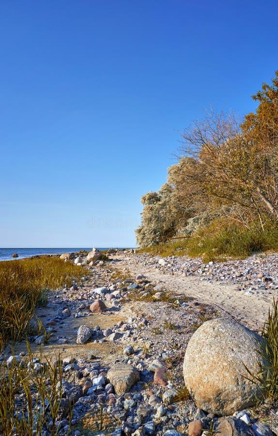 Big stone on the beach at the Baltic Sea cliff in Hohen Wieschendorf. Mecklenburg-Vorpommern. Coast, trees, coastline, sand, bluff, shore, bench, edge stock image