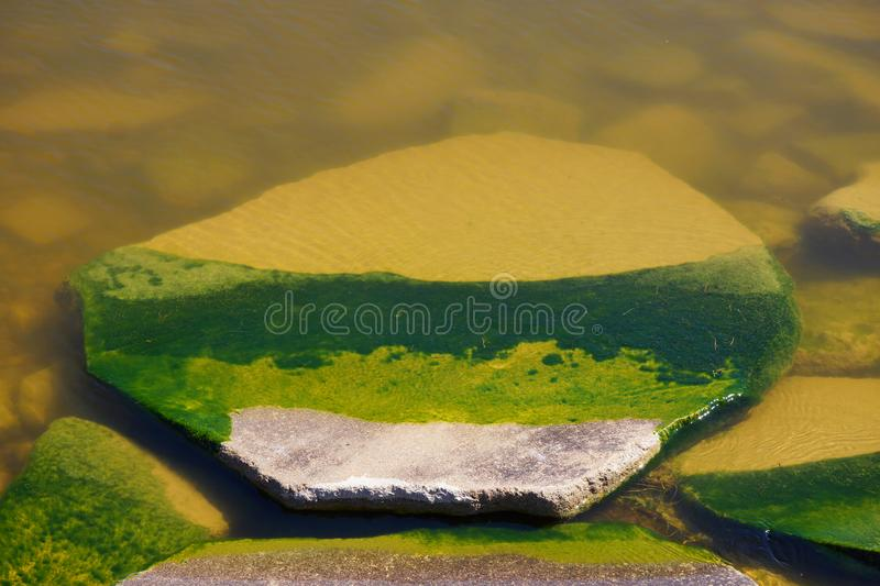 Big stone in green water in shadow sunny day summer Nordic nature clear water. Green background. stock photo