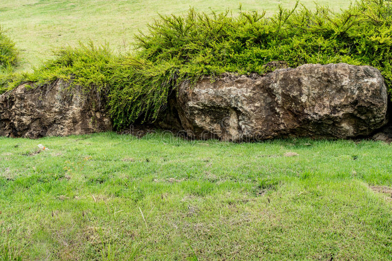 Merveilleux Download Big Stones In The Garden Stock Image. Image Of Stone   81836681