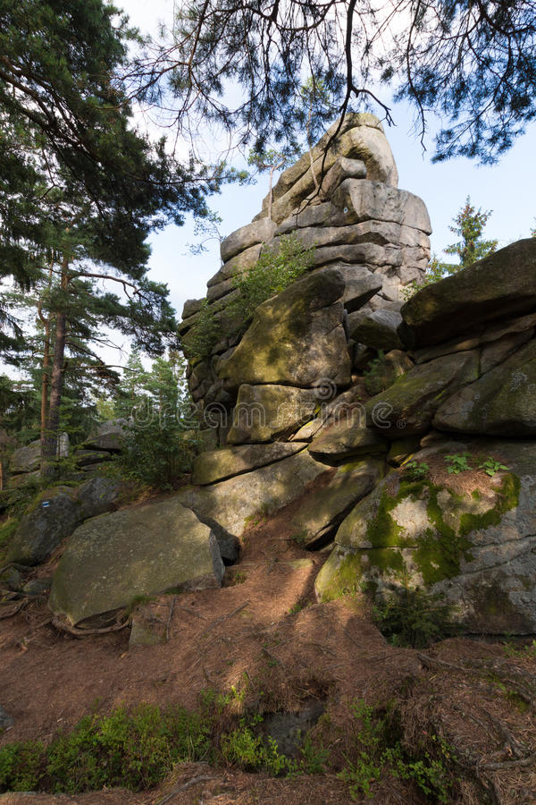 Big stones in the green forest. Some Big stones in the green forest royalty free stock images