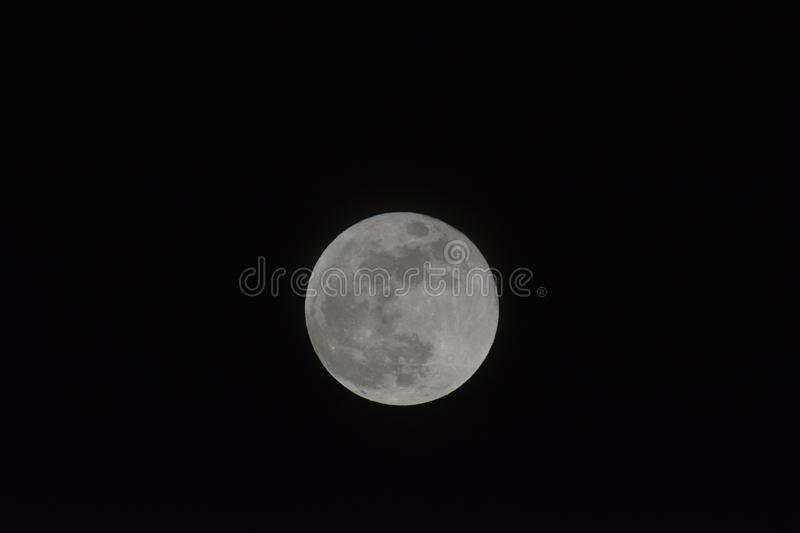 Big super moon in January 2018 in the Netherlands. Big super moon on 31 january 2018, photo taken in the garden location: Abcoude the netherlands stock photography