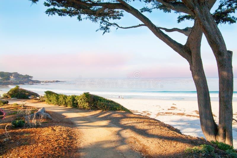 Big Sur, CA, U.S.A. fotografie stock