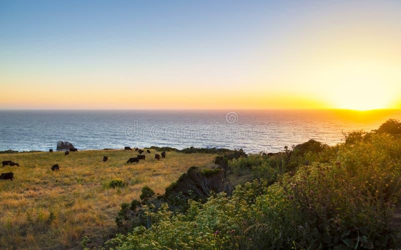 Big Sur, Calif?rnia imagens de stock