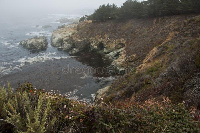 Big Sur Cliff stock photos