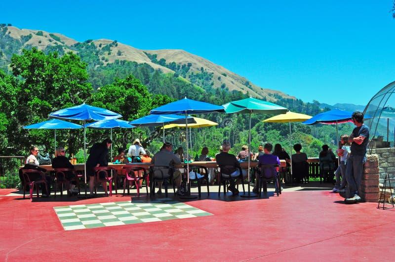 Big Sur, Kalifornien, die Vereinigten Staaten von Amerika, USA lizenzfreie stockfotos