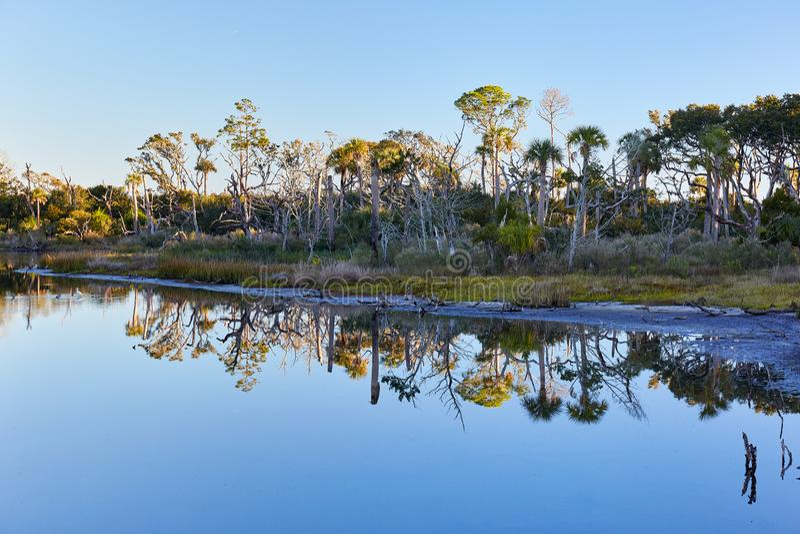 Big Talbot Island State Park, Florida. Early morning scene at Big Talbot Island State Park near Jacksonville, Florida royalty free stock photography