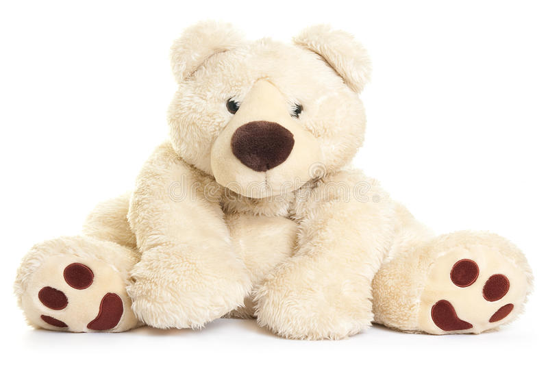 Big teddy bear. Teddy bear toy isolated on a white background royalty free stock image
