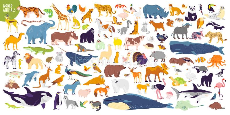 Big vector set of different world wild animals, mammals, fish, reptiles and birds. Rare animals. Funny flat characters, good for b. Anners, prints, patterns vector illustration