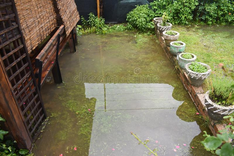 Big water floods after massive storm rain. The garden and the plants are covered with dirty water. Many damages after the heavy royalty free stock photography