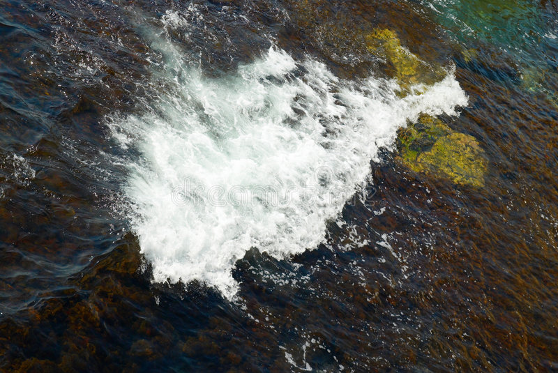 A big wave and the brown algae.  stock image