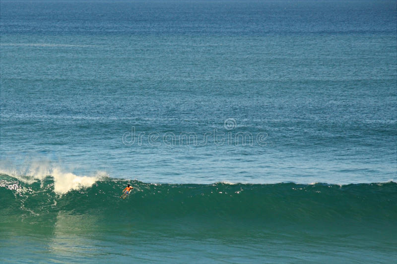Download Big Wave Surfer Stock Images - Image: 13105364