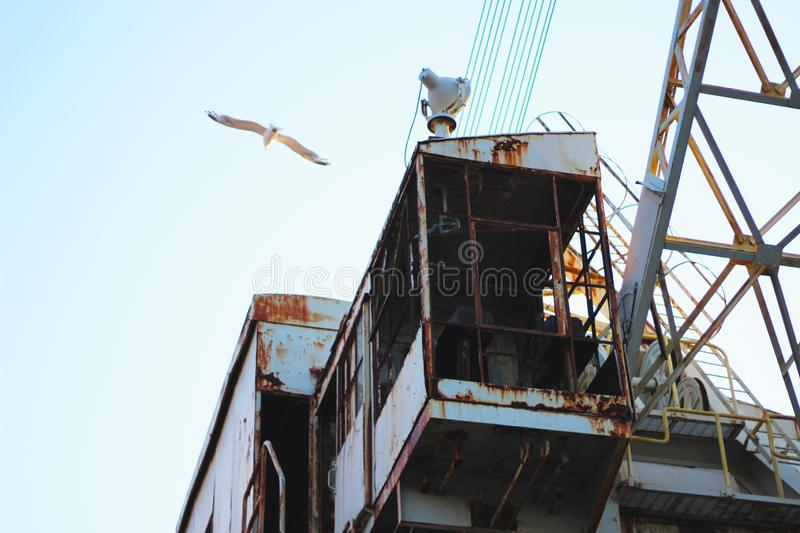 Big white seagull flying over a rusty steel structure stock photos