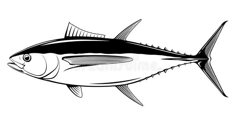 Black White Realistic Fish Stock Illustrations 880 Black White Realistic Fish Stock Illustrations Vectors Clipart Dreamstime