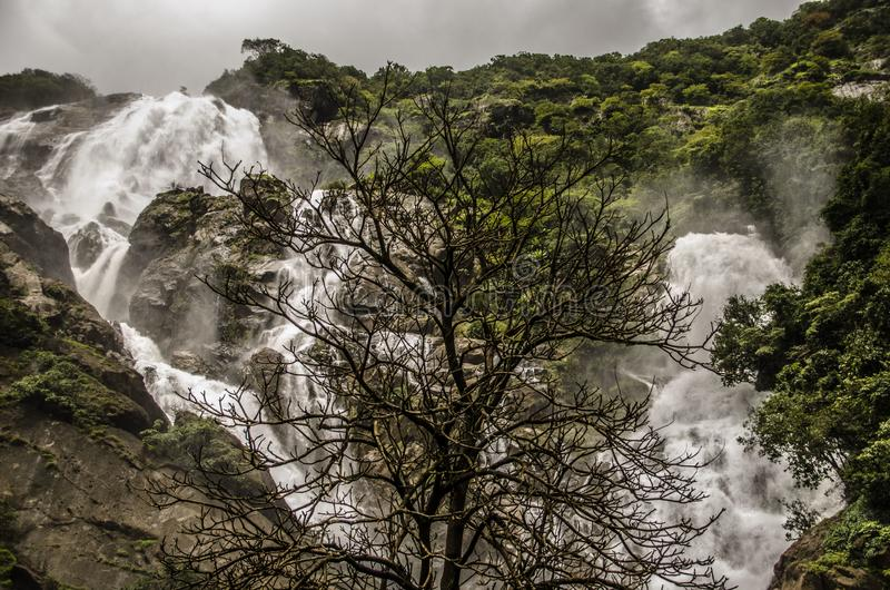 Biggest waterfall in India royalty free stock photos