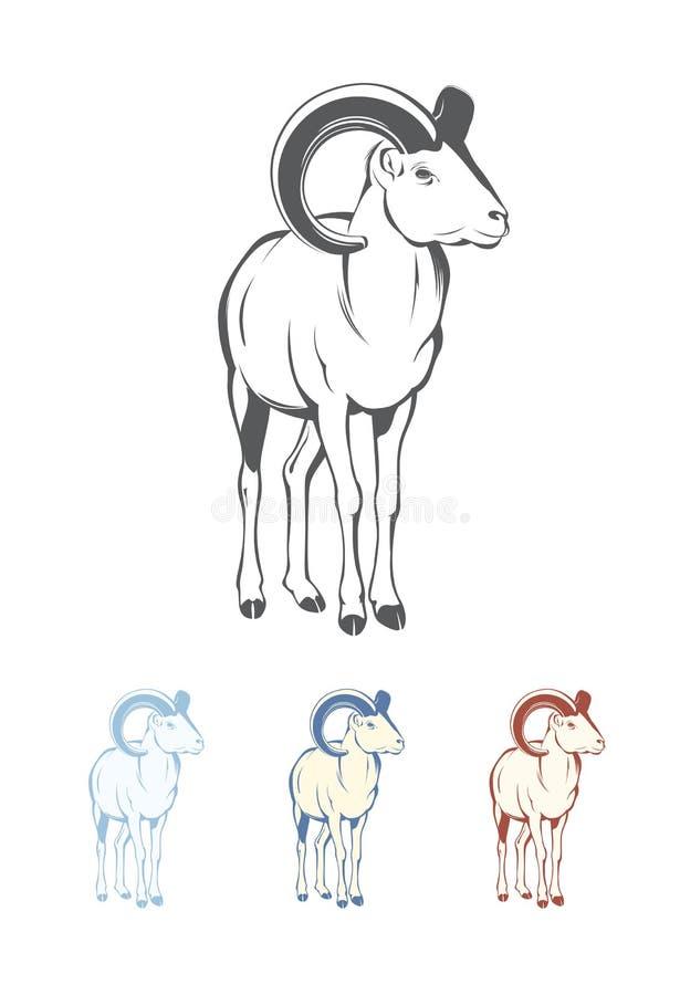 Bighorn Sheep Stock Illustrations 691 Bighorn Sheep Stock