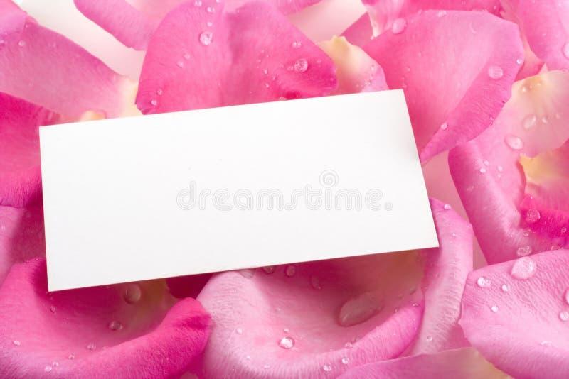 Biglietto da visita sui petali di rosa dentellare fotografia stock libera da diritti