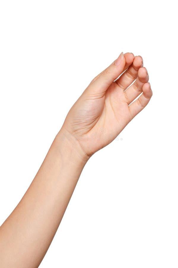 Biglietto da visita virtuale della tenuta della mano della donna su fondo bianco clipi fotografie stock