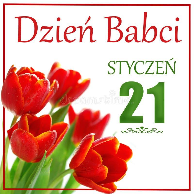 Biglietto di auguri con testo in lingua polacca Giorno della nonna 21 gennaio immagini stock libere da diritti