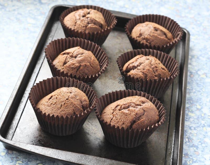 Bigné di recente cotti del cioccolato fotografia stock