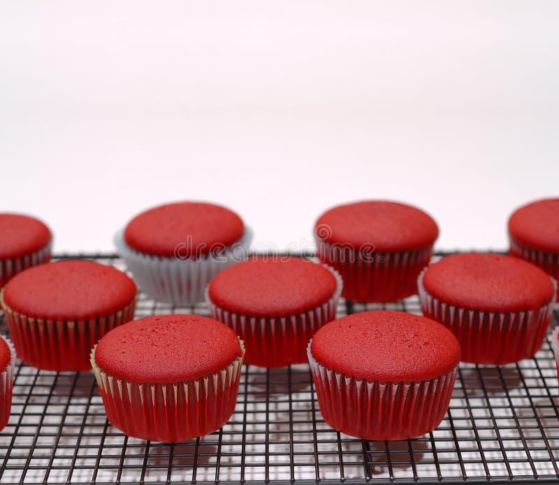 Download Bigné rossi del velluto immagine stock. Immagine di torte - 3143751