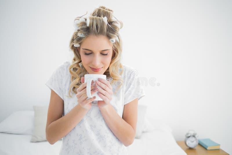 Bigodini d'uso della bionda sveglia pacifica che odorano caffè fotografia stock libera da diritti