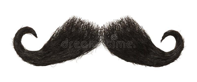 bigote foto de archivo