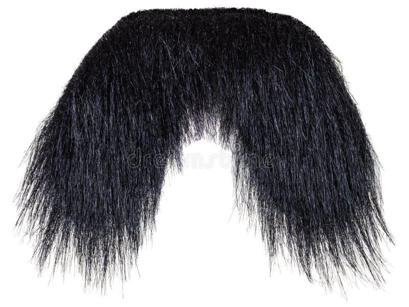 Bigote negro colgante aislado en blanco foto de archivo libre de regalías