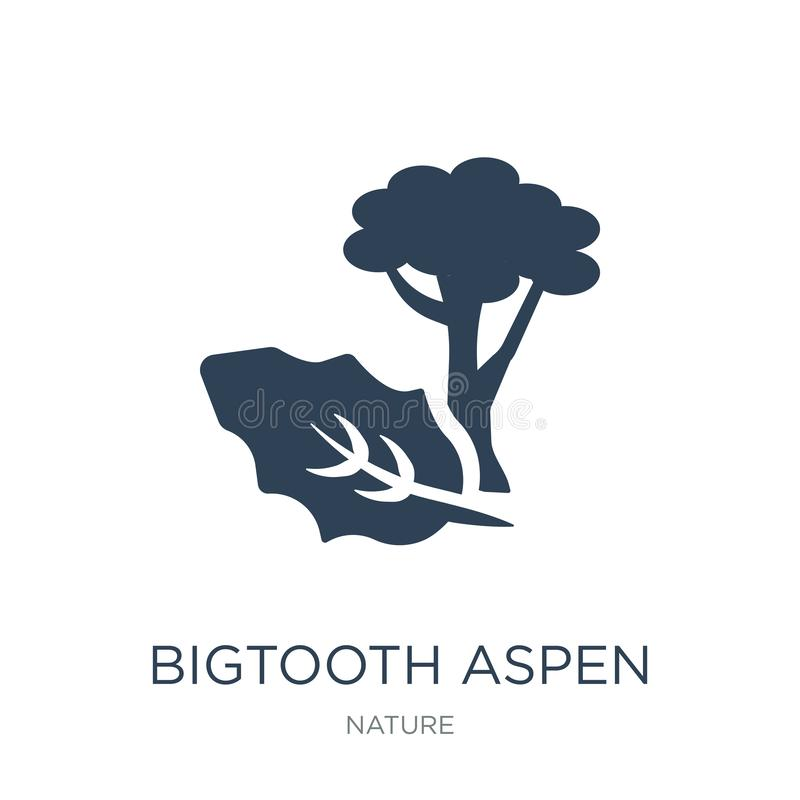 bigtooth το εικονίδιο δέντρων στο καθιερώνον τη μόδα ύφος σχεδίου bigtooth το εικονίδιο δέντρων που απομονώνεται στο άσπρο υπόβαθ ελεύθερη απεικόνιση δικαιώματος