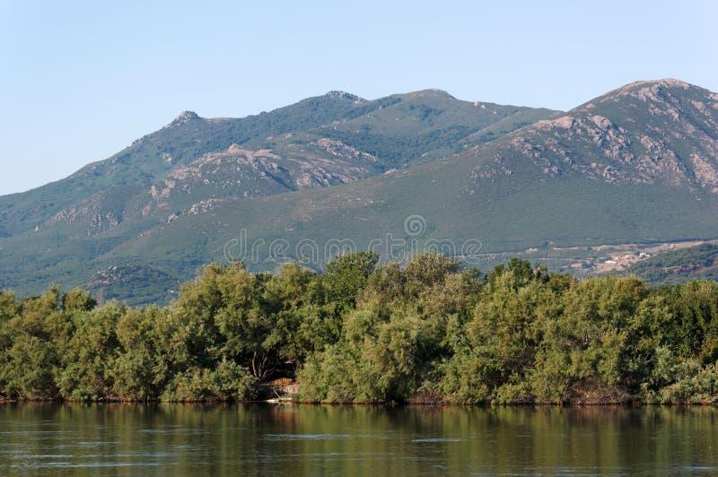 Biguglia lagoon in corsica island. Biguglia lagoon in eastern coast of corsica royalty free stock photos