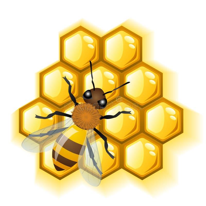 Bij met honing royalty-vrije illustratie