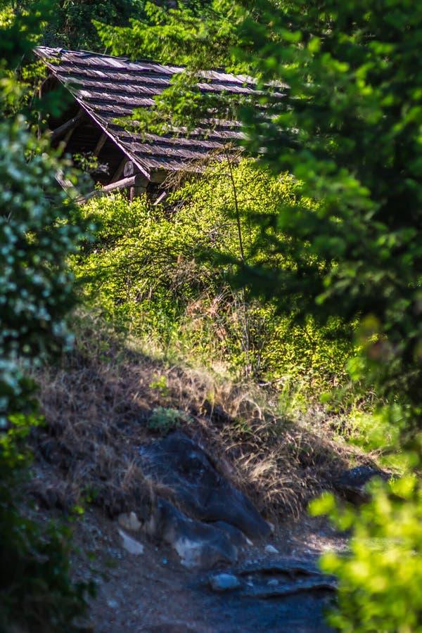 Bij rivieroeverkom en het park van de waterkruikstaat in Spokane Washington stock foto's