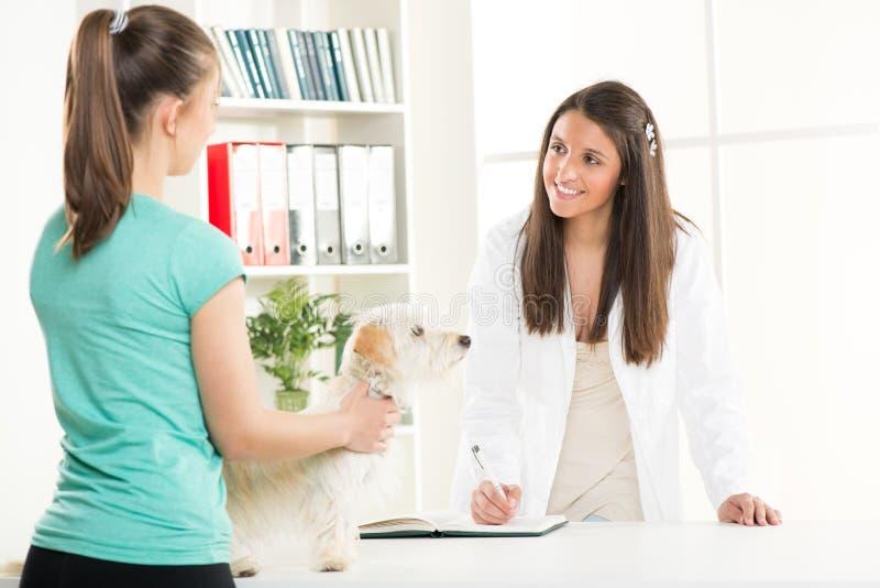 Bij veterinair royalty-vrije stock foto