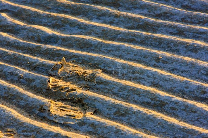 Bij zonsondergang, is de voetafdrukken op het strand zeer mooi in de zon stock fotografie
