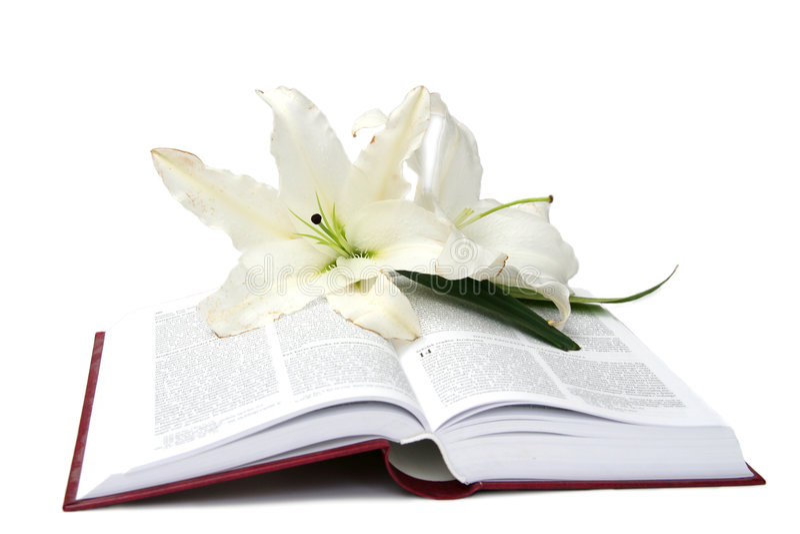 Bijbel stock afbeeldingen