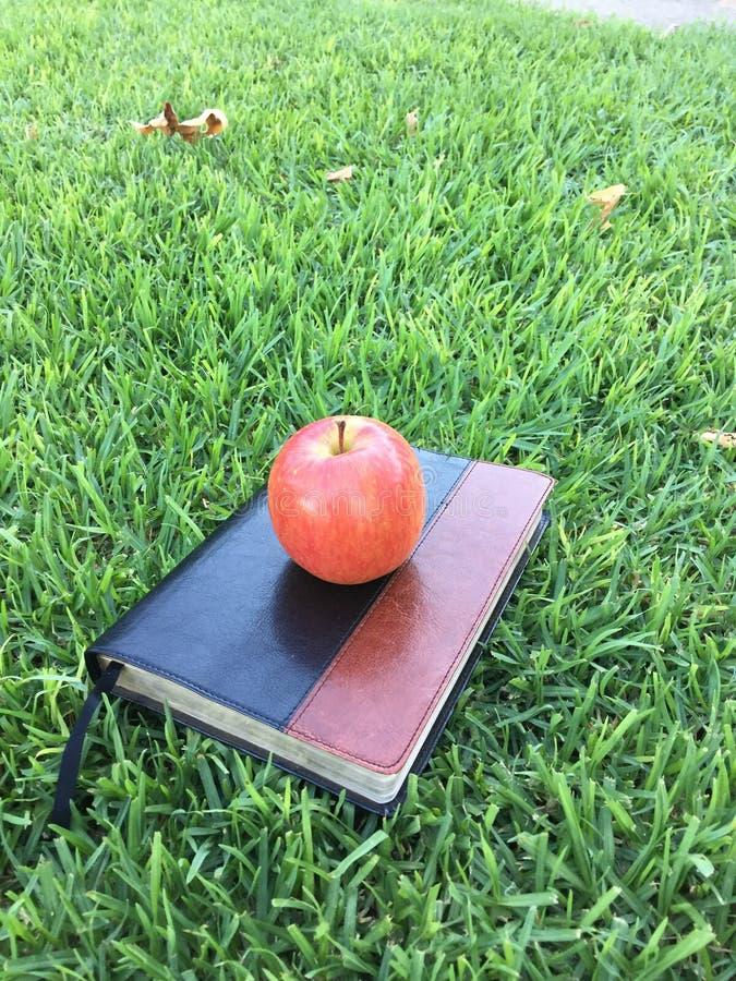 Bijbel en appel stock fotografie