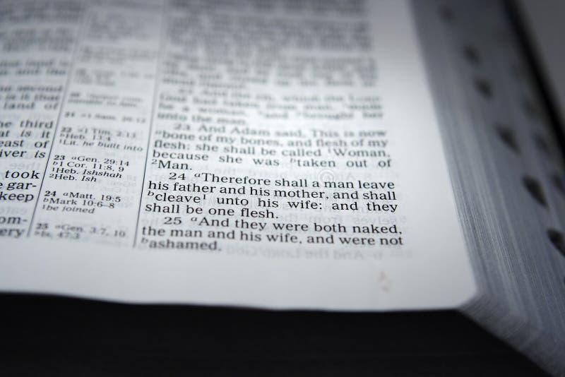 Bijbel open aan Genesis Chapter 2 Vers 24 royalty-vrije stock afbeeldingen
