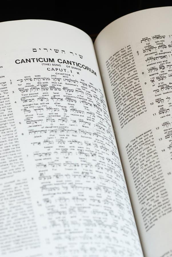 Bijbelstudie royalty-vrije stock afbeeldingen